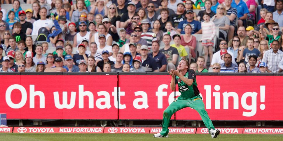 James Faulkner takes a catch in the Big Bash League for Melbourne Stars.jpg